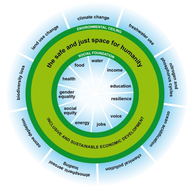 Doughnut Economics -'The do's and doughnuts of economic growth'